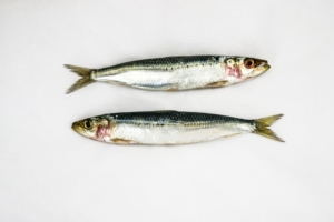 2021 World Food Prize for pioneering work with small fish